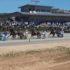 Regionalisation brings new Regional Championships