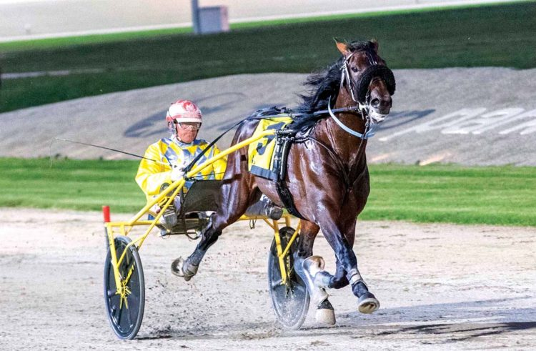 Date change a 'boost' for young trotters