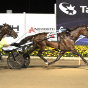 King reigns supreme in Miracle Mile