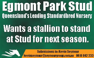 Egmont wants stallion