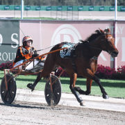 Four 'good things' for Menangle today