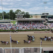 More meetings than ever at Australia's busiest harness track