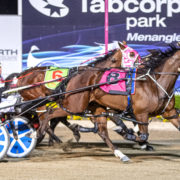 Interstate campaign earmarked for rising star