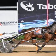 Well-bred mare's comeback complete