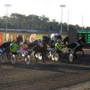 Club Menangle makes a tough call