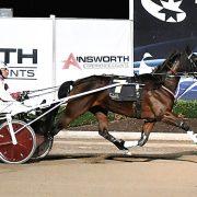 Classy trotter's impressive racing return