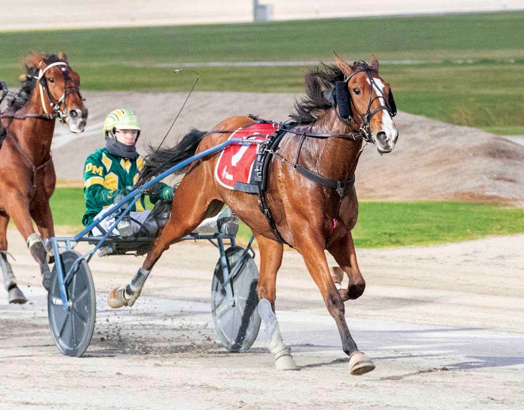 Talented trotter's tricky Tabcorp task