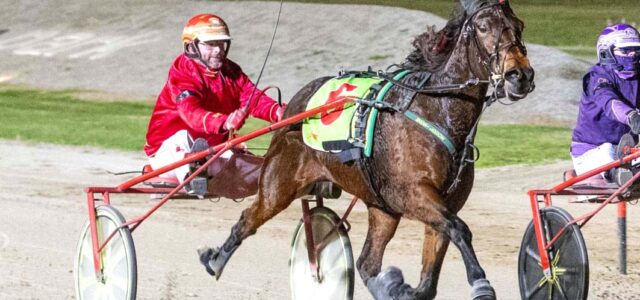 Wonder mare successfully defends Group One title