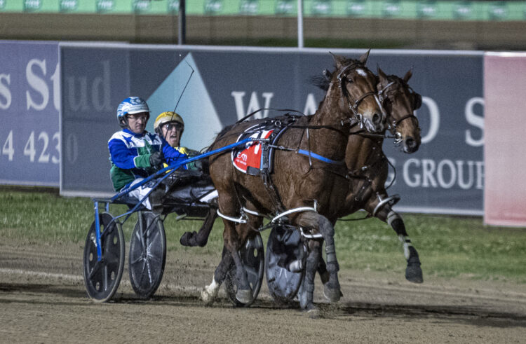 Mike Ko'cass's in-depth Menangle preview for Saturday night