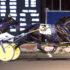 Stallion dominates Mohawk debutante races