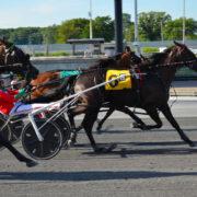 Former Kiwi sizzles at Harrington Raceway