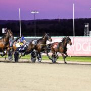 Bathurst stable setting the pace