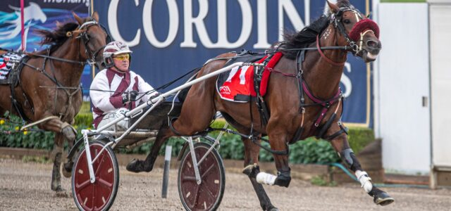 Mike Ko'cass analyses every race at Tabcorp Park Menangle