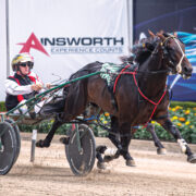 Youngster expected to be major improver