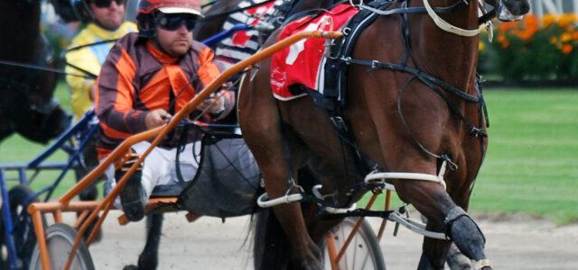 Ace horseman making the move to Bathurst