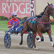 Stable foreman stepping up to the mark