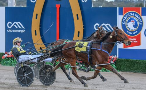 Riverina boy lines up for a treble