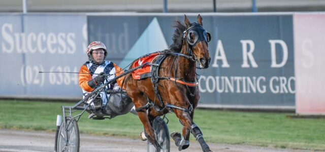 Seven big shots bound for Tamworth feature