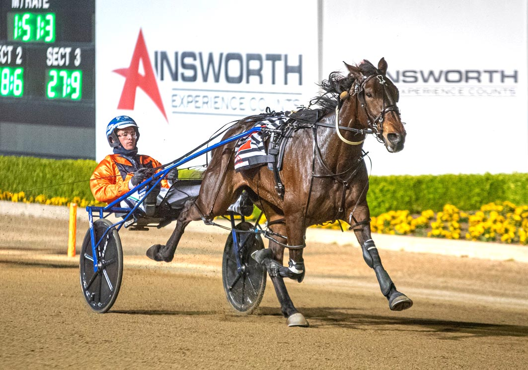 Aussie mare causes upset at The Meadows