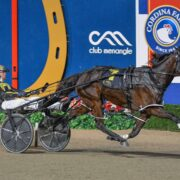 All the Menangle Late Mail from Mick Ko'cass