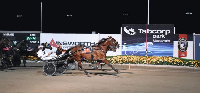 Mat will never 'Rue' the day he chose harness racing