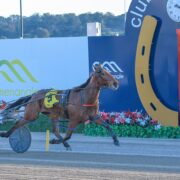 Mick Ko'cass with a race-by-race analysis of Menangle Saturday night