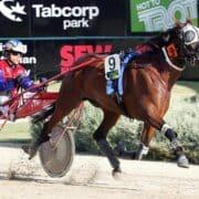 Debut winner causes major upset as $137 outsider