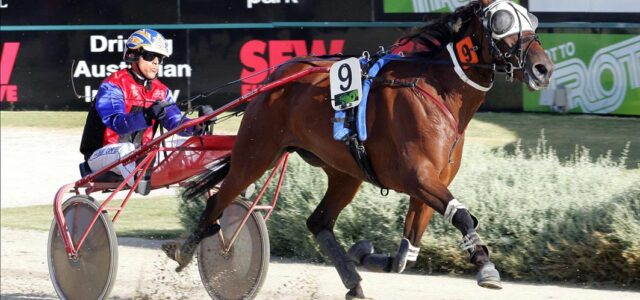 Debut winner causes major upset as $137 outsider
