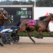 All the winners for Breeders Challenge night at Menangle