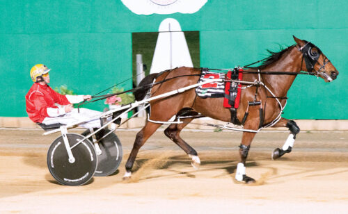 Local star to repel interstate challengers