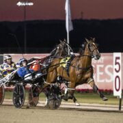 Mick Ko'cass dissects Saturday night's Menangle chances