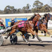 Kiwi filly too good in Redwood Classic
