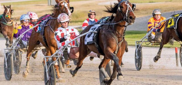 Classy youngster's interstate campaign extended