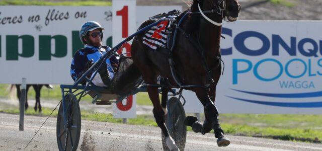 NSW Regional series kicks on into 2021