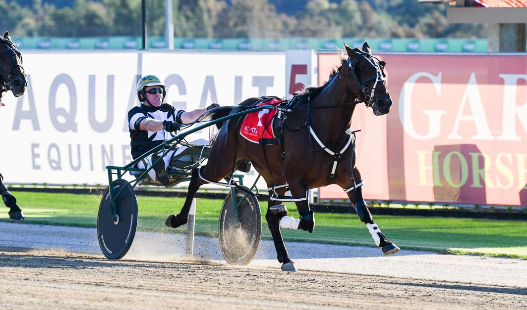 Sights set on premier four-year-old event