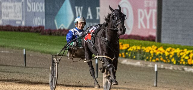 Mick Ko'cass's race-by-race guide to backing a winner at Menangle