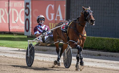 Late Mail with three specials for Menangle Tuesday