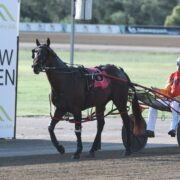 Late Mail for Menangle with Mick Ko'cass