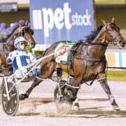 Injury derails Arty's Miracle Mile aspirations