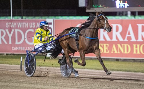 Mike Ko'cass takes an in-depth look at Menangle Saturday night