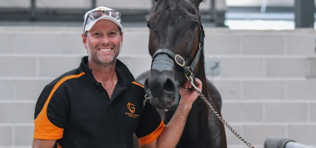 This is a 'first' for a Southern Hemisphere trotter