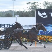 All the Late Mail for Menangle Tuesday
