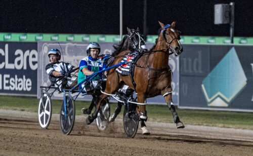 All the Mail for Menangle from Mike Ko'cass
