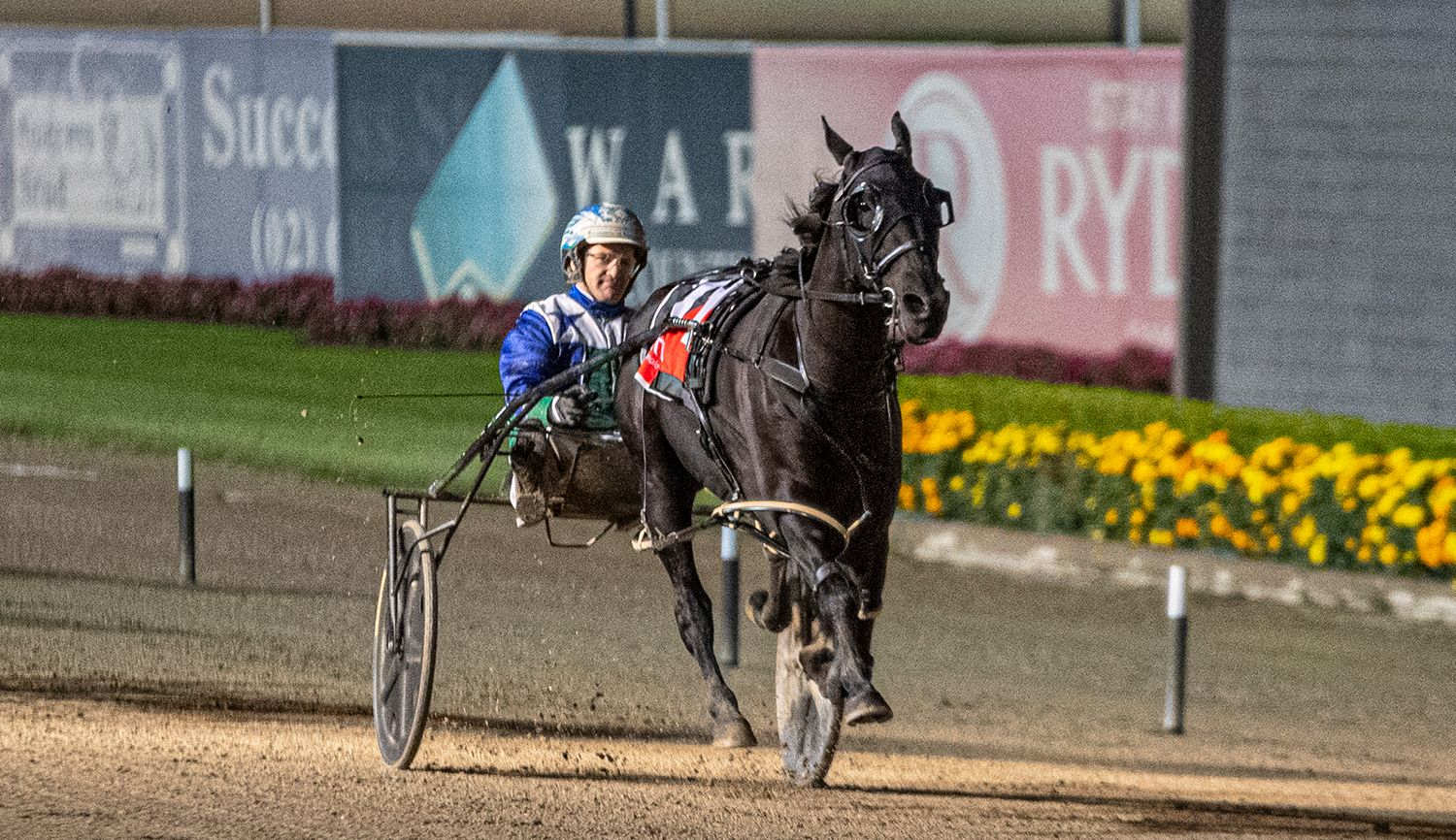 Here's all the winners for Menangle Saturday