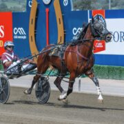 Mick Ko'cass brings us the Late Mail for Menangle Tuesday