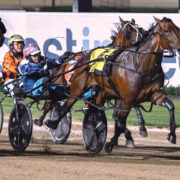 Victorian primed for Australia's premier mares' event