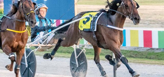 Back in search of overdue Group One triumph