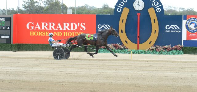 Late Mail for Menangle Tuesday