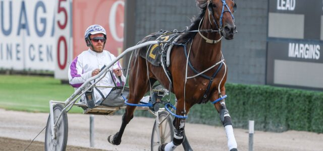 A race-by-race guide to all the winners at Menangle Saturday night