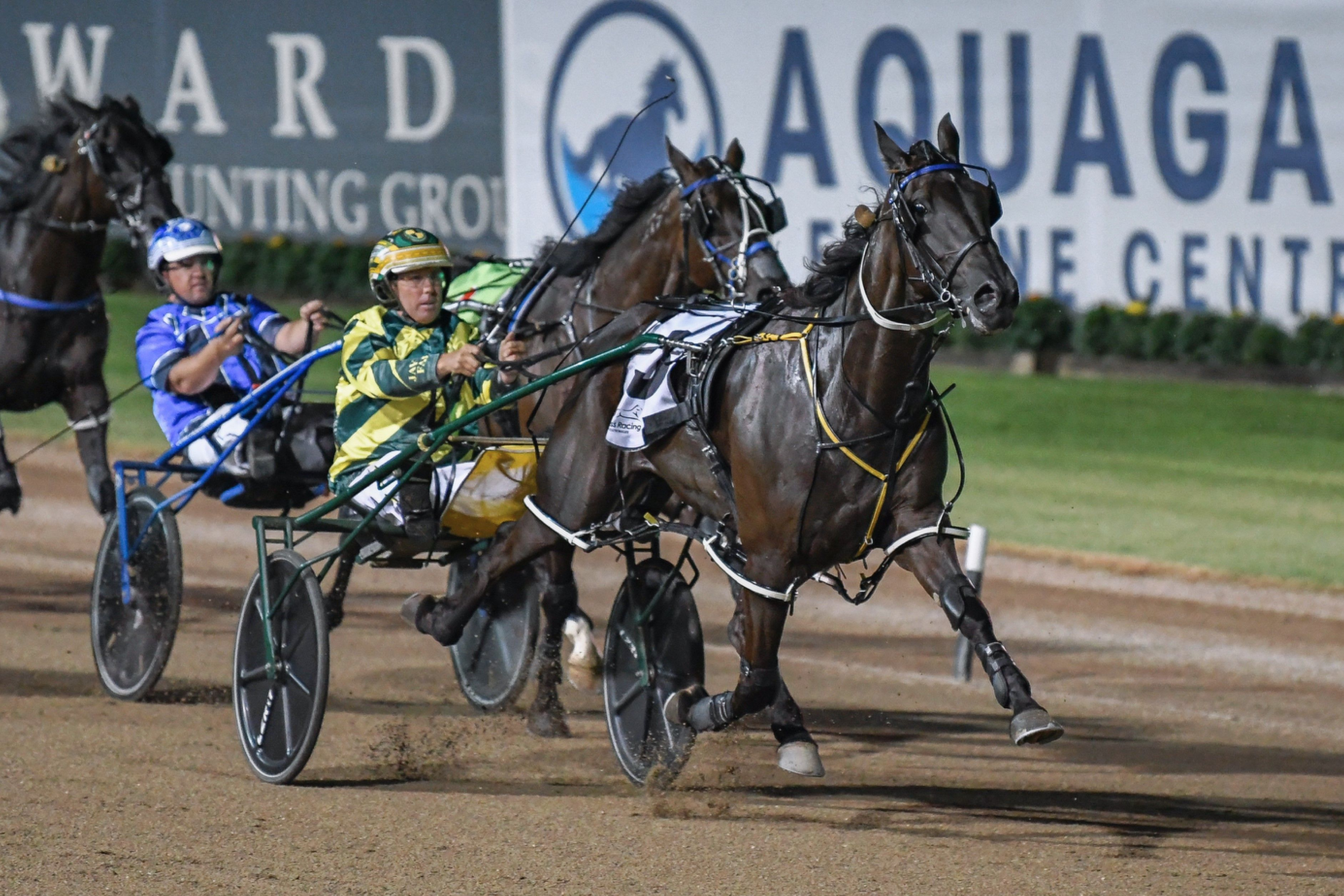 All the Late Mail for Menangle's big night